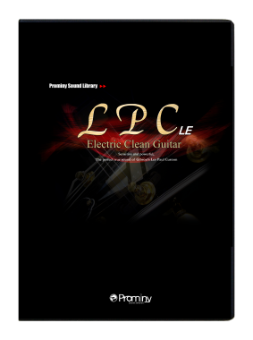 Package of LPC Electric Guitar LE